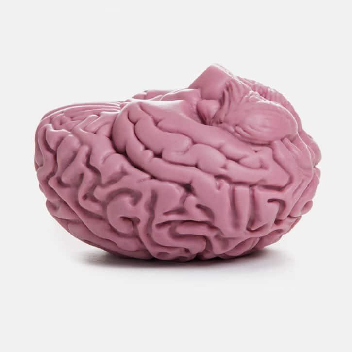 Brain--1-512upside-down