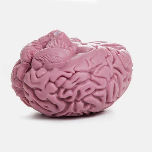 Brain-2-512-upside-down